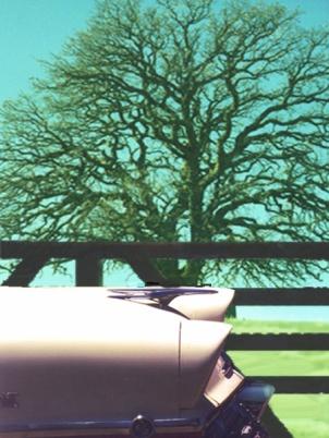 cartree