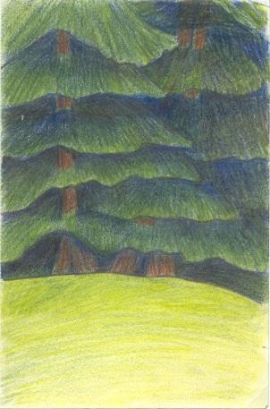 redwoods287K_576x872WEB